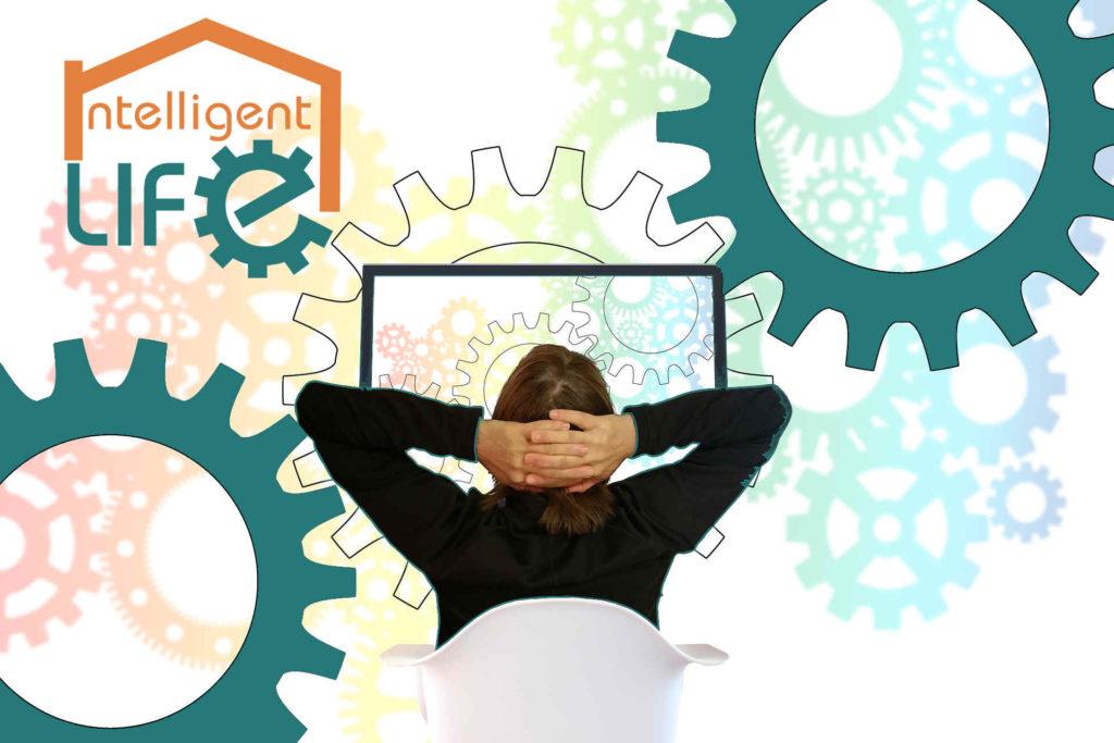 Software y programas personalizados para tu empresa  Intelligent Life